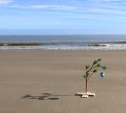 Arbre de Noël sur une plage Photos stock