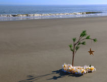 Arbre de Noël sur une plage Image stock