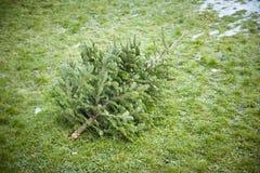 Arbre de Noël utilisé photo libre de droits