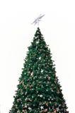 Arbre de Noël vert Image libre de droits