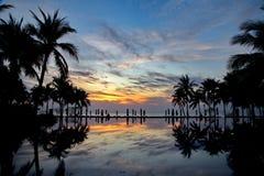 Arbre de noix de coco crépusculaire de silhouette près de piscine de plage image stock