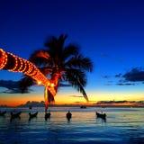 Arbre de noix de coco par la plage ce penchement à la mer Photographie stock