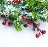 Arbre de Noël au-dessus de fond de neige Images stock