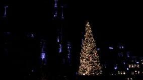 Arbre 2016 de Noël de Bruxelles, Belgique Grand Place la nuit banque de vidéos