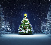 Arbre de Noël en bois neigeux d'hiver Photo stock