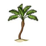 Arbre de Palm Beach Le repos d'été choisissent l'icône dans le rater de style de bande dessinée, illustration à mémoire d'image d Photo libre de droits