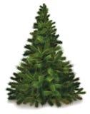 Arbre de pin de Noël de vecteur Image stock