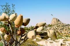 Arbre de poterie devant le château d'Uchisar dans Cappadocia, Turquie Image stock
