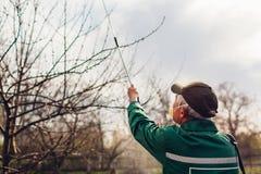 Arbre de pulv?risation d'agriculteur avec le pulv?risateur manuel de pesticide contre le jardin d'insectes au printemps Agricultu image libre de droits