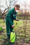 Arbre de pulv?risation d'agriculteur avec le pulv?risateur manuel de pesticide contre le jardin d'insectes au printemps Agricultu photographie stock libre de droits