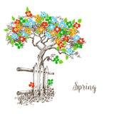 Arbre de ressort en fleur Image libre de droits