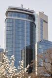Arbre de ressort et hôtel blancs Hilton à Kiev, Ukraine Photographie stock
