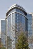 Arbre de ressort et hôtel Hilton à Kiev, Ukraine Photographie stock