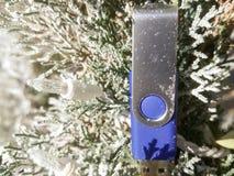 arbre de saison des vacances de mémoire Images libres de droits