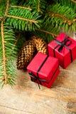 Arbre de sapin avec les pinecones et le boxe décoratif Photos stock