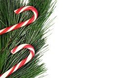 Arbre de sapin de Noël et canne de sucrerie sur le fond blanc Photo libre de droits