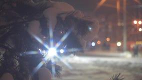 Arbre de sapin sur un fond du trafic de nuit clips vidéos