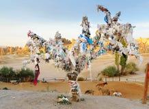 Arbre de souhait dans Goreme Cappadocia La Turquie photos libres de droits
