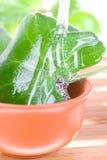 arbre de thé de pétrole Photos stock