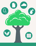 Arbre de vert d'Infographic Photo stock