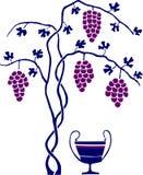 Arbre de vin et de raisin Photographie stock libre de droits