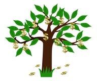 arbre du dollar Photo libre de droits