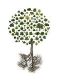 Arbre effectué à partir des arbres Images libres de droits