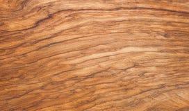 Arbre en bois olive de fond photos libres de droits