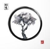 Arbre en cercle noir de zen d'enso Image libre de droits