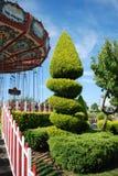 Arbre en parc d'attractions Images stock