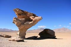 Arbre en pierre dans le désert Atacama Photo stock