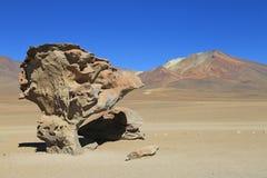 Arbre en pierre dans le désert, Bolivie Images libres de droits