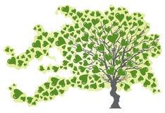 Arbre en vent avec les coeurs verts Image stock