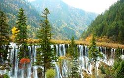 Arbre et cascade à écriture ligne par ligne d'automne Photos stock