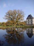 Arbre et château de chêne Image libre de droits