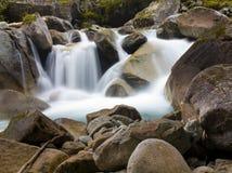 Arbre et chute au lac Gaube, parc naturel des Pyrénées Photo stock