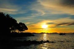 Arbre et coucher du soleil de silhouette Photo libre de droits