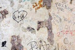 Arbre et graffiti Images libres de droits