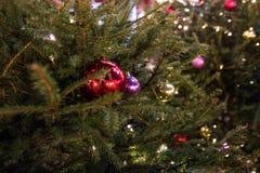 Arbre et jouets de Noël dans la rue de la ville de nuit Photographie stock libre de droits