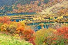 Arbre et lac d'automne dans Jiuzhaigou images stock
