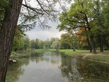 Arbre et lac d'automne en parc photo stock