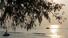Arbre et mer sur le lever de soleil Images stock