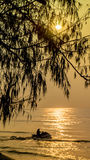 Arbre et mer sur le lever de soleil Photo stock