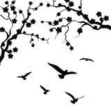 Arbre et oiseau illustration libre de droits