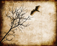 Arbre et oiseau de vol Photo stock