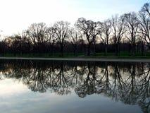 Arbre et regroupement se reflétant au mémorial de Lincoln dans le Washington DC Photographie stock libre de droits