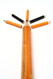 Arbre fait de crayons de la taille différente dans le point de vue Photographie stock