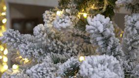 arbre givré par Noël Fond décoratif de Noël banque de vidéos