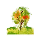 Arbre, illustration Photo stock