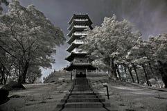 Arbre infrarouge, horizontaux et pagoda d'â de photo Image libre de droits